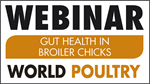 Gut health in young broilers, a prerequisite for future performance